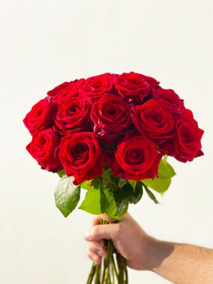 Rode red naomi rozen